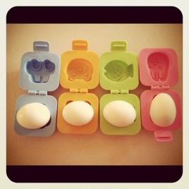 eggmoldcolore