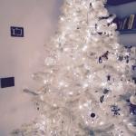E l'albero bianco.