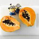 Helo Papaguena! Tu es bela com la papaya