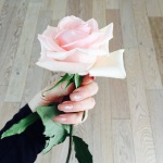 Amici che regalano fiori.